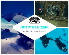 Grand Cayman Freediving 2017