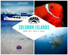 Solomon Islands Liveaboard 2017