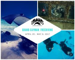 Grand Cayman Freediving 2017