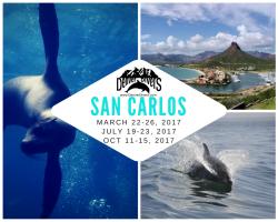 San Carlos 2017