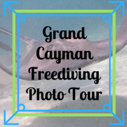 Grand Cayman Freediving Photo Tour