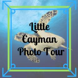 Little Cayman Photo Tour