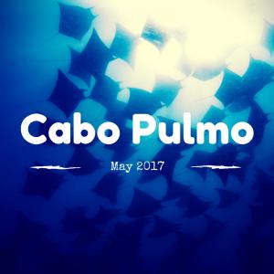 Cabo Pulmo 2017