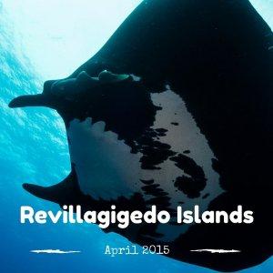 Revillagigedo Islands 2015
