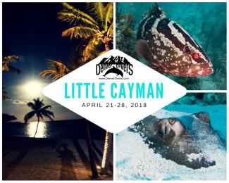 Little Cayman 2018