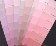cool undertone pink color samples