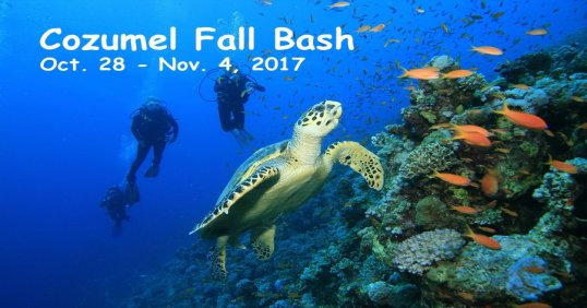 Cozumel Fall Bash 2017