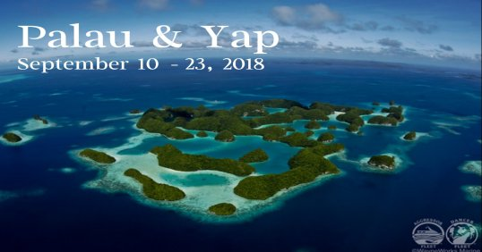 Palau and Yap 2018