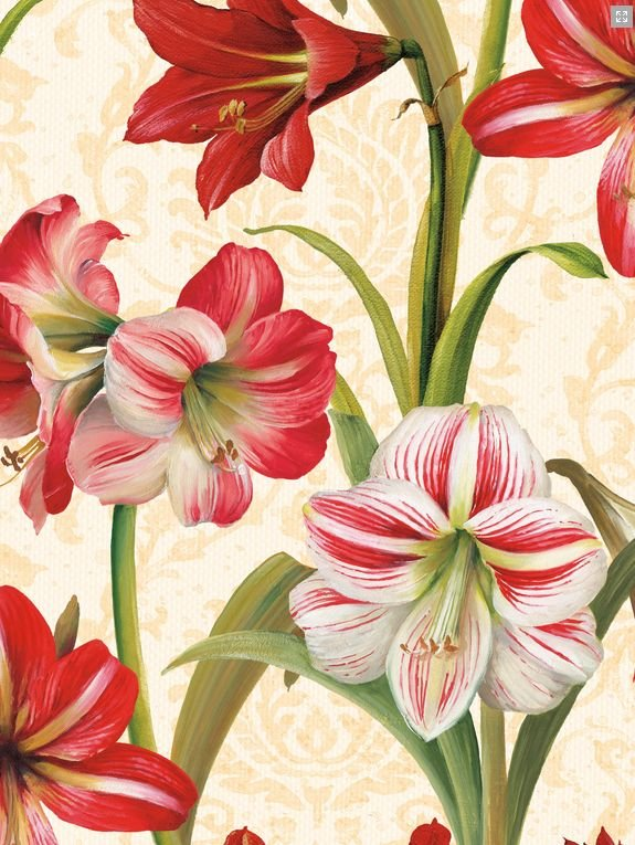 23572 Christmas in Bloom Caramel Large Scale Print 58 wide