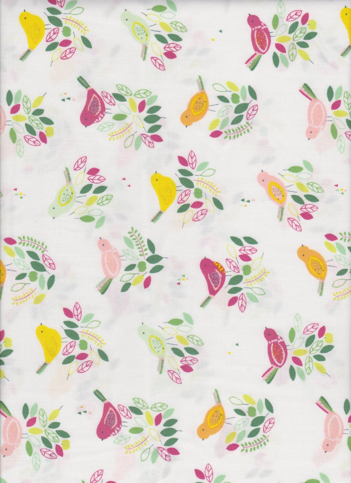 23432 Dear Stella Floral Birdies