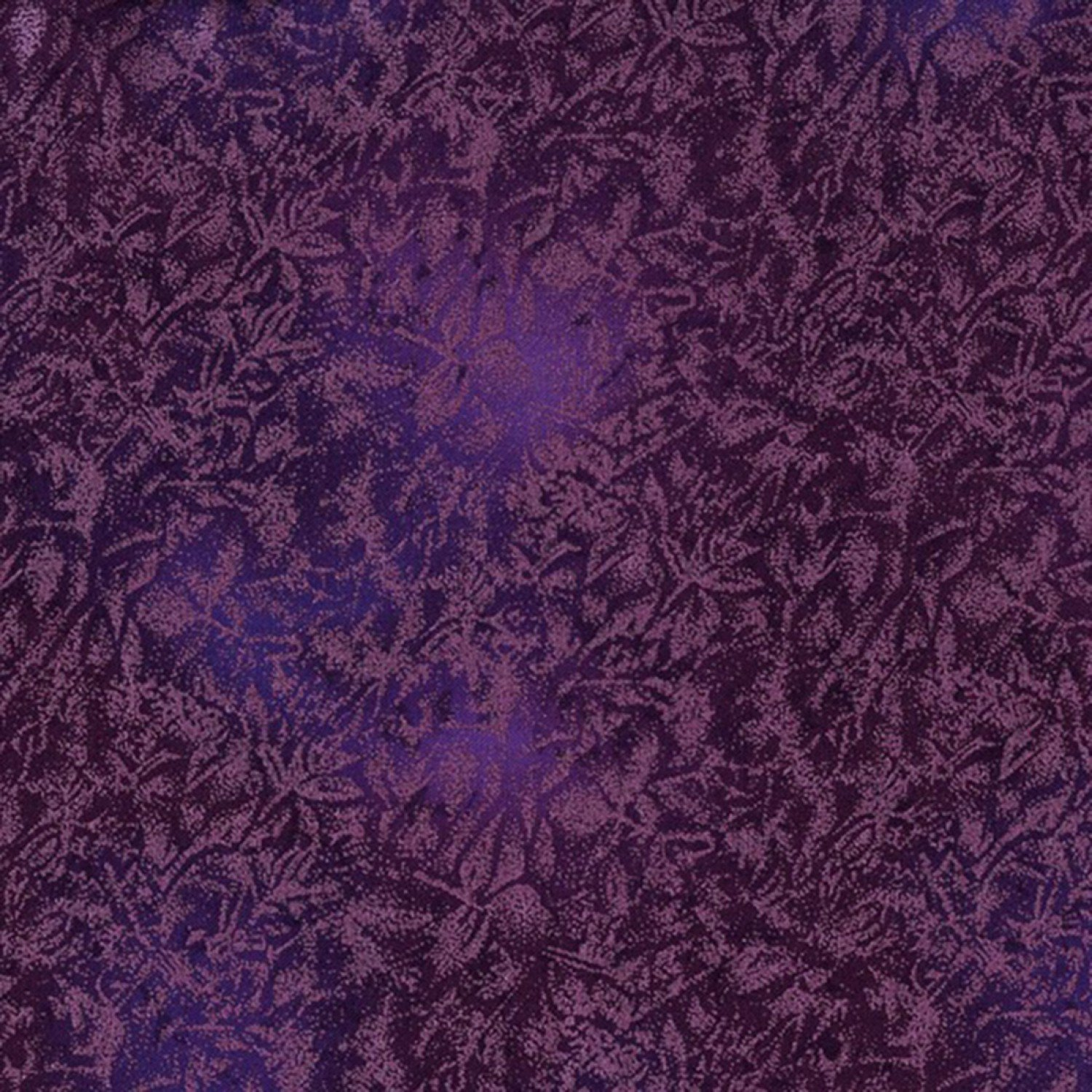 23352 Fairy Frost Violet