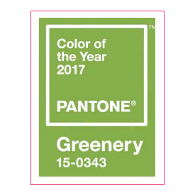 Pantone Color Swatch 2017
