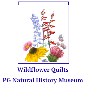 Wild Flower Quilt Exhibit at the PG Museum