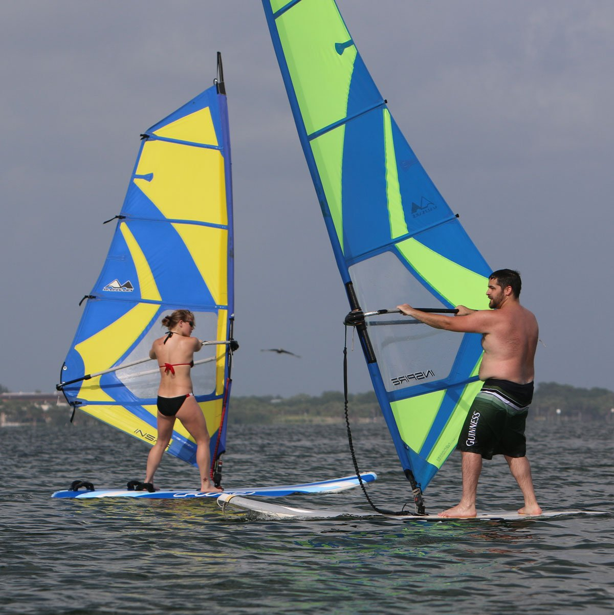 couple windsurfing