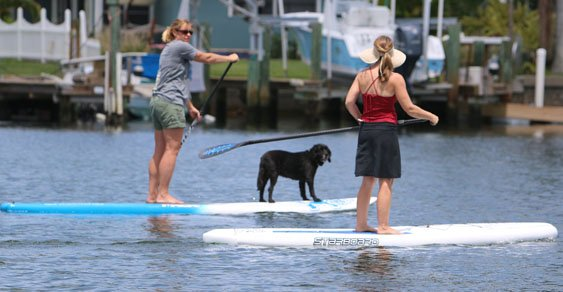 girls and dog sup