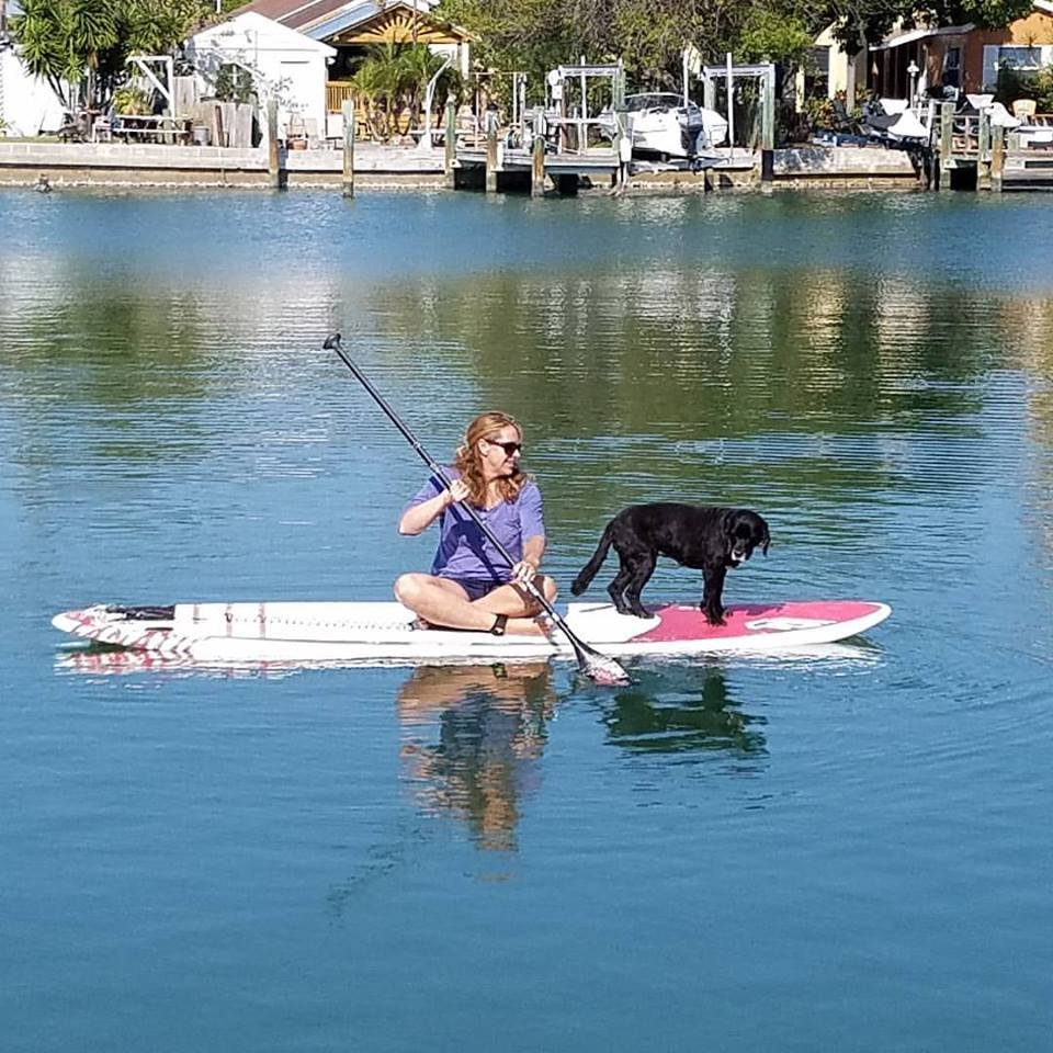 stand up paddle board rentals st pete beach