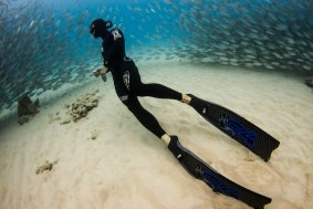 reef freediving trip from boat