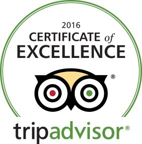 Trip Advisor Award of Excellence top reviewed dive company