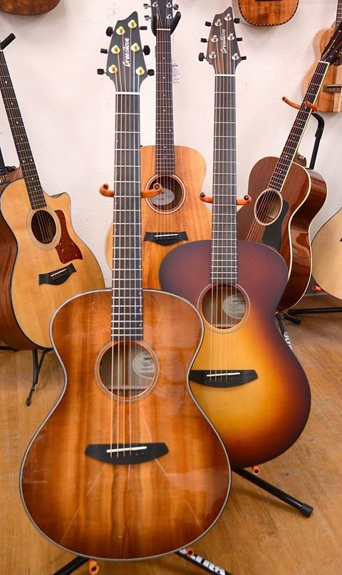 Breedlove Guitars at the Denver Folklore Center