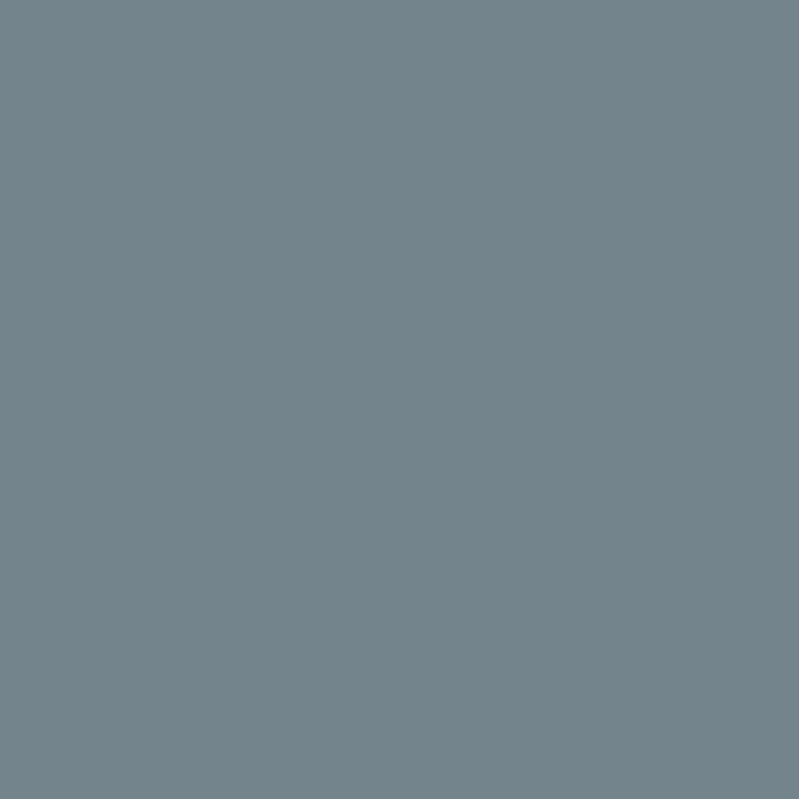 Grayish Blue Cosmo Floss  2981 Lt Grayish Blue  4975857607237