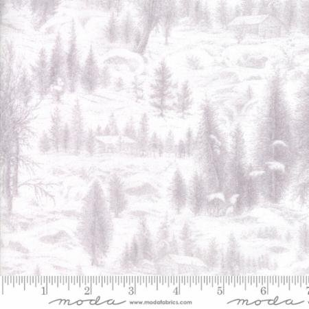 Forest Frost II