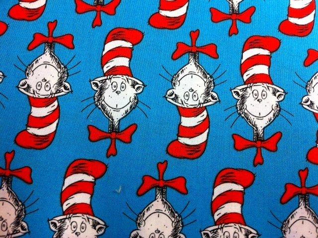 Cat In Hat Book Cover