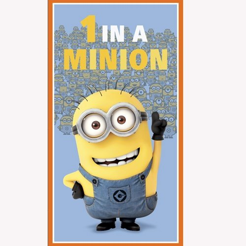 DUSTY BLUE-1 IN A MINIONS 24' PANEL