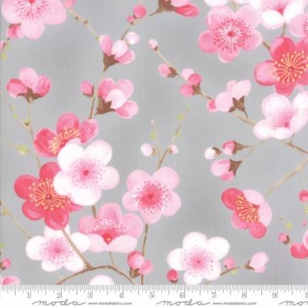 Sakura Blossoms Ash